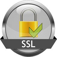 A Secure Socket Layer (SSL) connection is an encrypted network connection between a server and a client (browser).